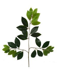 Rama de hojas verdes 55cm...