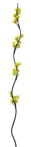 Flor seca 160cm color Amarillo