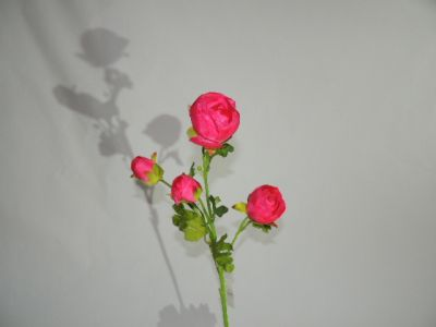 4头仿真茶苞 玫红 65cm