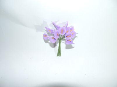 12头小马蹄莲 紫
