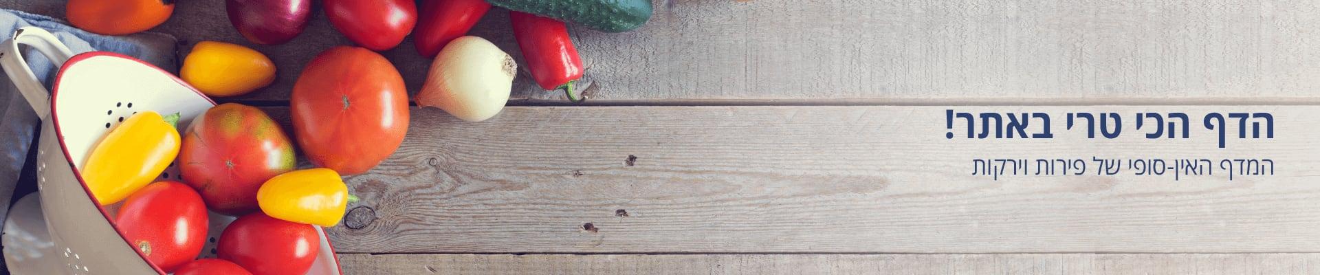 דף הכניסה למחלקת הפירות והירקות