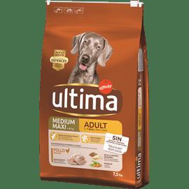 <!--begin:cleartext-->קנה 2 יחידות ממגוון מזון יבש לכלבים אולטימה קבל את השני ב- 50% הנחה (הזול מביניהם)<!--end:cleartext-->