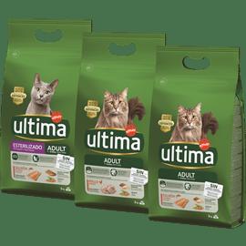 <!--begin:cleartext-->קנה ממגוון מזון יבש לחתולים אולטימה קבל חטיף לחתול נגיסי סלמון בחינם<!--end:cleartext-->