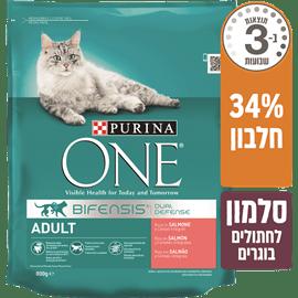 מזון יבש לחתולים פורינה