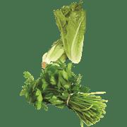 <!--begin:cleartext-->₪ קנה 2 יחידות ממגוון ירקות, פירות ותמרים יבולי בר אורגני בע''מ במחיר 9.90<!--end:cleartext-->