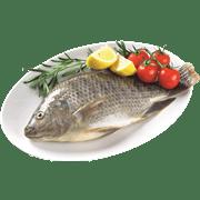 <!--begin:cleartext-->קנה 2 יחידות ממגוון דגים נקיים דגים טריים ב 35 ₪ לק''ג<!--end:cleartext-->
