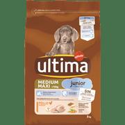 <!--begin:cleartext-->₪ קנה 2 יחידות ממגוון אולטימה מזון לכלבים 3 ק''ג במחיר 130<!--end:cleartext-->