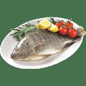 <!--begin:cleartext-->קנה 4 יחידות ממגוון דגים שלמים דגים טריים ב 25 ₪ לק''ג<!--end:cleartext-->