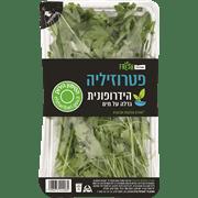 <!--begin:cleartext-->₪ קנה ממגוון ירק הידרופוני שופרסל במחיר 3.90 ₪ במקום 4.90<!--end:cleartext-->
