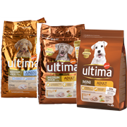 <!--begin:cleartext-->קנה ממגוון מזון יבש לכלבים אולטימה קבל חטיף לכלב מקלות עוף בחינם<!--end:cleartext-->