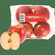<!--begin:cleartext-->קנה תפוח פינק ארוז מובחר בראשית מחיר לפי משק במחיר 13.90 ₪ לק''ג<!--end:cleartext-->