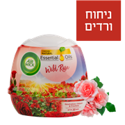 <!--begin:cleartext-->קנה אירוויק גל מוצק ורדים 180 גרם ,ב 80% הנחה<!--end:cleartext-->