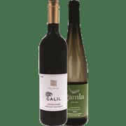 <!--begin:cleartext-->₪ קנה 2 יחידות ממגוון יינות שולחניים היכל היין שקד גולן בעמ במחיר 120<!--end:cleartext-->