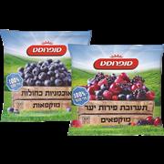 <!--begin:cleartext-->₪ קנה 2 יחידות ממגוון פירות קפואים במחיר 28<!--end:cleartext-->