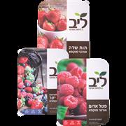 <!--begin:cleartext-->₪ קנה ממגוון פירות אורגניים מוקפאים 300 גרם 300 גרם במחיר 19.90 ₪ במקום 24.90<!--end:cleartext-->