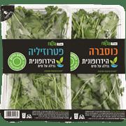 <!--begin:cleartext-->₪ קנה 2 יחידות ממגוון ירק הידרופוני שופרסל במחיר 8<!--end:cleartext-->