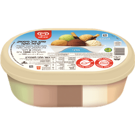 גלידה משפחתית חלבי5טעמים