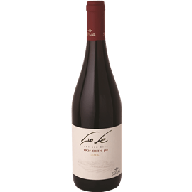 יין אדום יבש של סגל