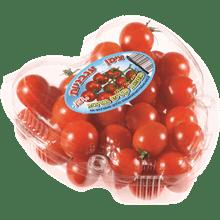 עגבניה שרי סוכריות יח