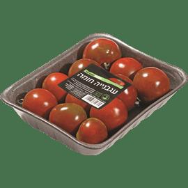 עגבניה חומה ארוז