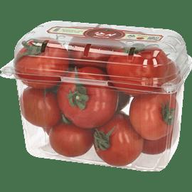 עגבניה טעם יח