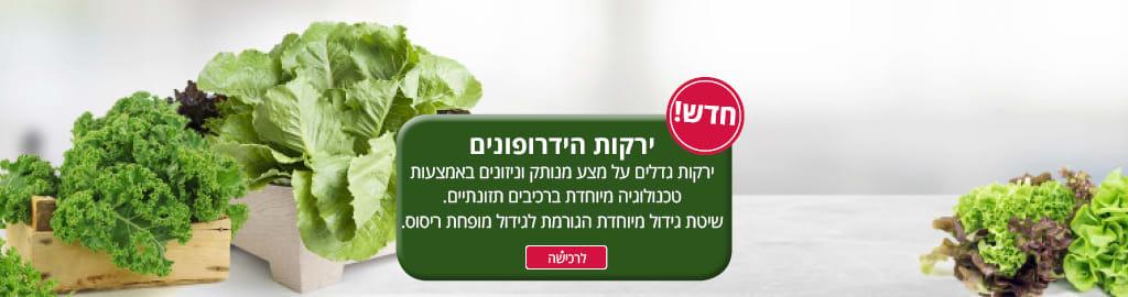 חדש! ירקות הידרופונים-ירקות הגדלים על מצע מנותק וניזונים באמצעות טכנולוגיה מיוחדת ברכיבים תזונתיים. שיטת גידול מיוחדת הגורמת לגידול מופחת ריסוס.