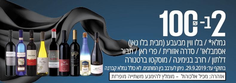 2 ב- 100 ₪ על סדרת יינות גמלא* / בלו ווין מבעבע (מבית בלו נאן) / אסמבלאז' / סדרה אזורית / פרי ראן / תבור דלתון/ רזרב בנימינה/ מוסקטו ברטנורה.  לא כולל גמלא קברנה. ניתן לערבב בין המותגים. בתוקף עד 29.9.19.  אזהרה: מכיל אלכוהול – מומלץ להימנע משתייה מופרזת.