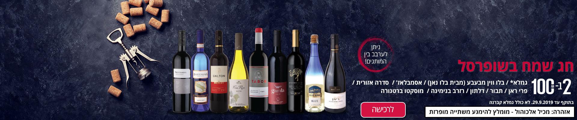חג שמח בשופרסל. 2 ב- 100 ₪ על יינות גמלא* /בלו ווין מבעבע (מבית בלו נאן) /אסמבלאז/ /סדרה אזורית/פרי ראן/תבור/דלתון/רזרב בנימינה/מוסקטו ברטנורה.בתוקף עד 29.9.2019. לא כולל גמלא קברנה. אזהרה: מכיל אלכוהול – מומלץ להימנע משתייה מופרזת.