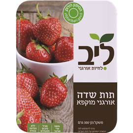 תות שדה אורגני מוקפא
