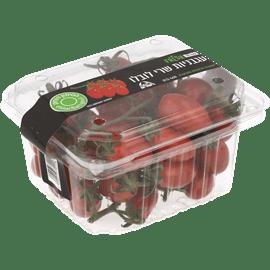 עגבניה שרי לובלו