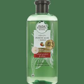 שמפו ללא סולפטים אלוורה