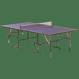 שולחן פינג פונג פנים 110