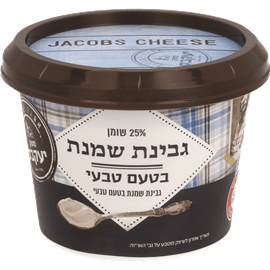 גבינת שמנת 25%