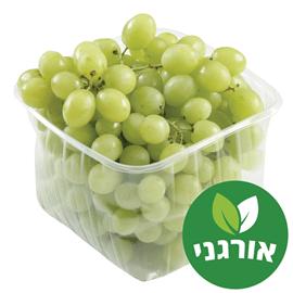 ענבים ירוקים אורגנים