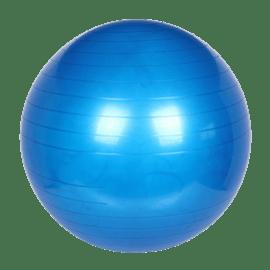 כדור פזיו 65 סמ+משאבה pi