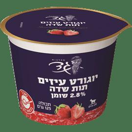 יוגורט עיזים עם תות