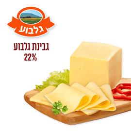 גבינה גלבוע 22%