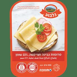 גבינת גלבוע פרוסות 22%