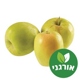 תפוח עץ ענה אורגני