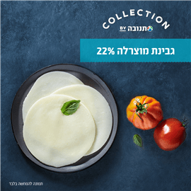 גבינת מוצרלה 22%