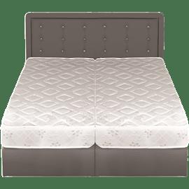 מיטה מרופדת עם הפרדה