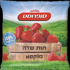 תות שדה מוקפא