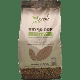 קמח טף ללא גלוטן
