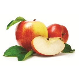 תפוח עץ קנזי
