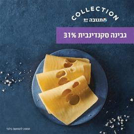 גבינה סקנדינבית 31%
