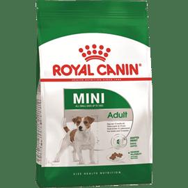 רויאל קנין כלב מיני בוגר