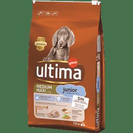 אולטימה מזון לגורים