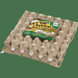 ביצים אומגה 3 לבן M