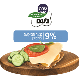 נועם גבינה צהובה9% חריץ