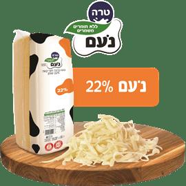 נועם גבינה צהובה22% חריץ